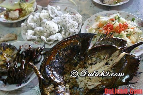 Sam biển – món ngon Quảng Yên, Hạ Long - Những món ăn ngon khi du lịch Hạ Long