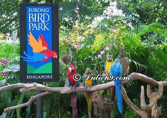 Địa điểm, khu vui chơi giải trí ở Singapore