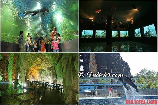 Thiên Đường Bảo Sơn điểm đến thú vị ở Hà Nội