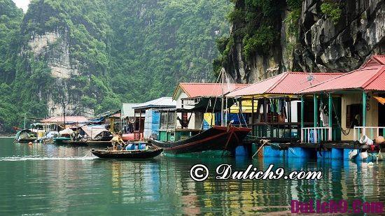 Kinh nghiệm du lịch Hạ Long - địa điểm đẹp ở Hạ Long