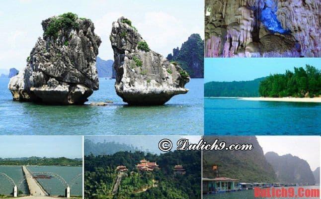 Những địa điểm nên tham quan khi du lịch Hạ Long