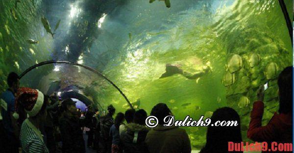 Những khu du lịch đặc biệt không nên bỏ qua ở Nha Trang