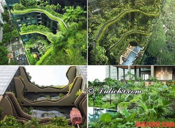 Những công trình kiến trúc xanh nổi tiếng của Singapore