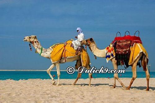 Thời điểm du lịch thích hợp ở Dubai/ Nên du lịch Dubai khi nào? Kinh nghiệm du lịch Dubai tự túc, giá rẻ