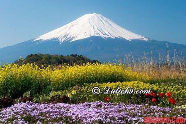 Thời điểm thích hợp nhất để du lịch Nhật Bản