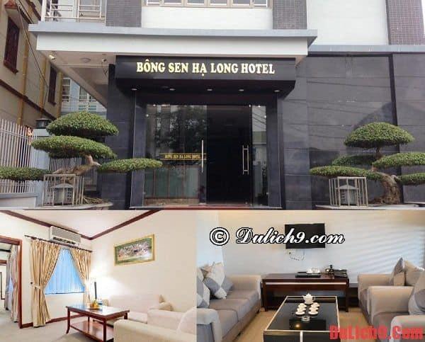 Bông Sen Hạ Long Hotel- Khách sạn gần biển Hạ Long sạch đẹp, thân thiện, giá hợp lý nên đặt phòng