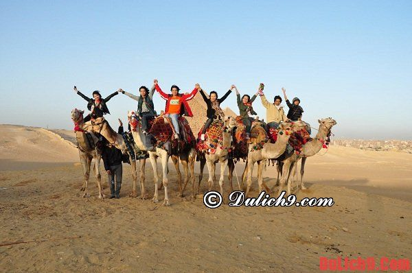Kinh nghiệm du lịch Ai Cập: Hướng dẫn cách di chuyển, đi lại, tham quan, ăn uống, vui chơi khi du lịch Ai Cập