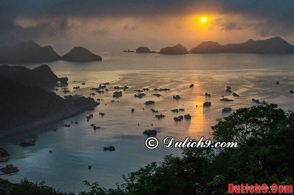 Địa điểm tham quan đảo Cát Bà