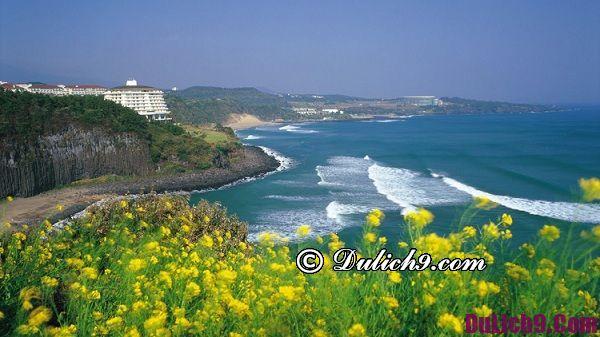 Những địa điểm đẹp không nên bỏ qua ở Hàn Quốc