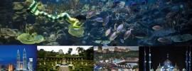Những điểm du lịch nổi bật nhất Malaysia ở Kuala Lumpur