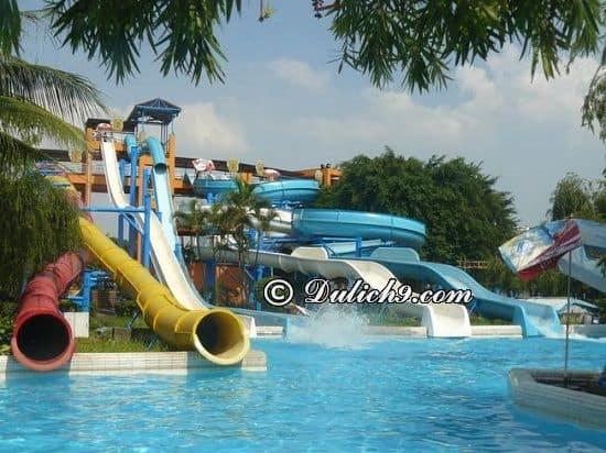 Địa điểm vui chơi, giải trí nổi tiếng ở Vũng Tàu: Tư vấn lịch trình tham quan, vui chơi, ăn uống khi du lịch Vũng Tàu