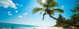 Ăn gì? Ở đâu? Chơi chỗ nào khi du lịch Đảo Phú Quốc