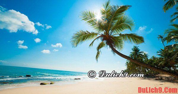 Ăn gì? Ở đâu? Chơi chỗ nào khi du lịch Đảo Phú Quốc: Du lịch Phú Quốc đi đâu chơi, tham quan, ăn uống?