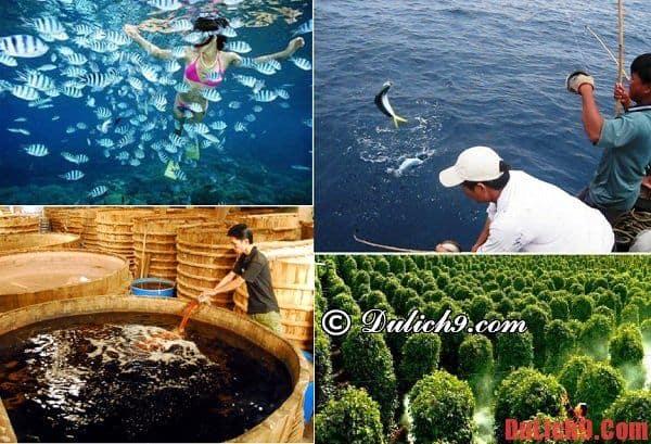 Du lịch Phú Quốc nên chơi, thăm quan ở những chỗ nào? Nên đi đâu chơi, tham quan khi du lịch Phú Quốc?