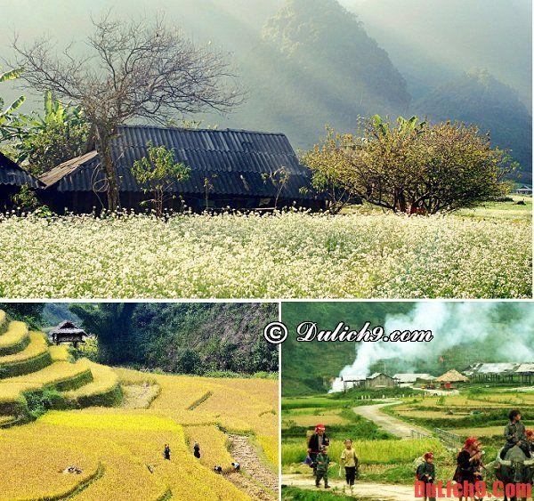 Thời điểm du lịch Sapa thích hợp nhất. Du lịch Sapa mùa nào, tháng mấy đẹp nhất?