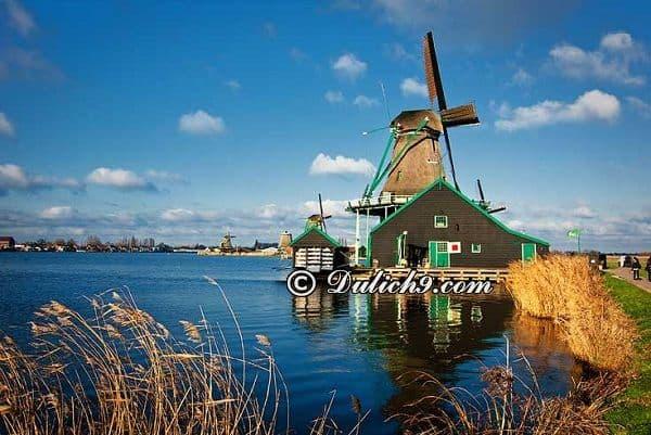 Tới Amsterdam vào thời điểm nào/ Thời điểm lí tưởng du lịch Amsterdam: Du lịch Amsterdam mùa nào, tháng mấy đẹp nhất?