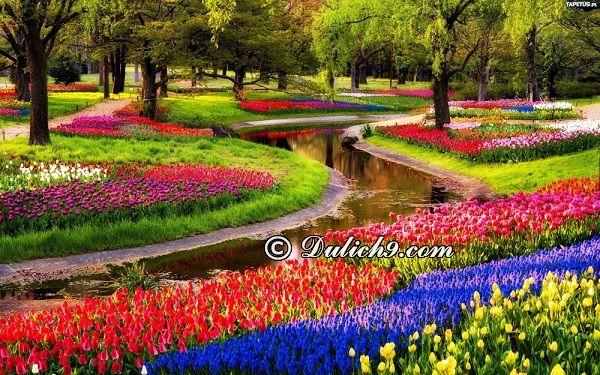 Địa điểm tham quan ở Amsterdam/ Đi đâu, chơi gì khi du lịch Amsterdam? Hướng dẫn tour du lịch Amsterdam giá rẻ