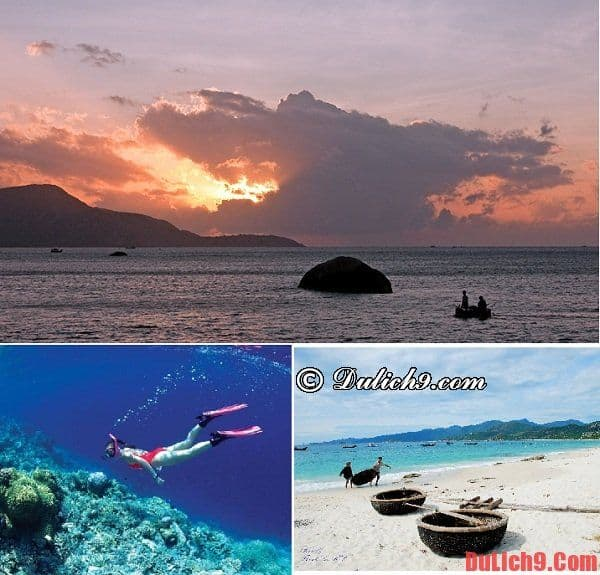 Địa điểm tham quan hấp dẫn khi du lịch bụi đảo Bình Ba