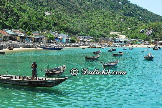 Kinh nghiệm du lịch Cù Lao Chàm: Thời gian tuyệt nhất để du lịch Cù Lao Chàm/ Du lịch Cù Lao Chàm mùa nào?