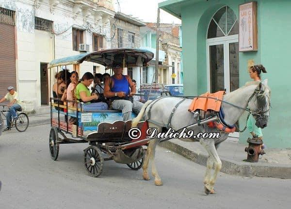 Du lịch Cuba vào thời điểm nào? Thời gian lí tưởng du lịch Cuba - Kinh nghiệm du lịch Cuba