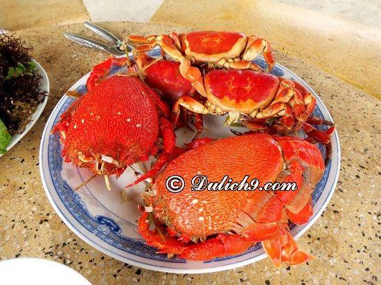 Ăn uống gì tại đảo Lý Sơn, ăn ở đâu ngon? Du lịch đảo Lý Sơn nên ăn món gì?
