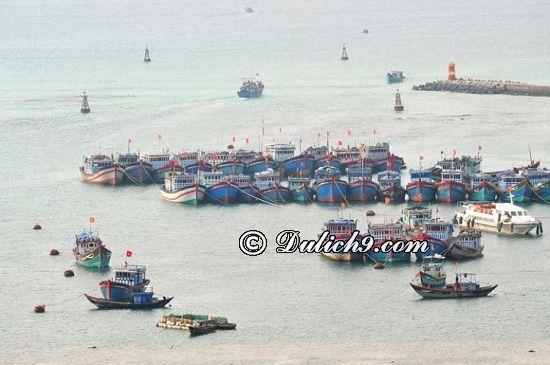 Cách di chuyển tới đảo Lý Sơn/ Phương tiện đi lại đi du lịch đảo Lý Sơn: Giá vé tàu ra đảo Lý Sơn