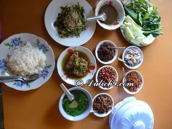 Ăn gì ngon khi du lịch Myanmar/ Thưởng thức đặc sản Myanmar: Kinh nghiệm du lịch Myanmar tự túc, giá rẻ