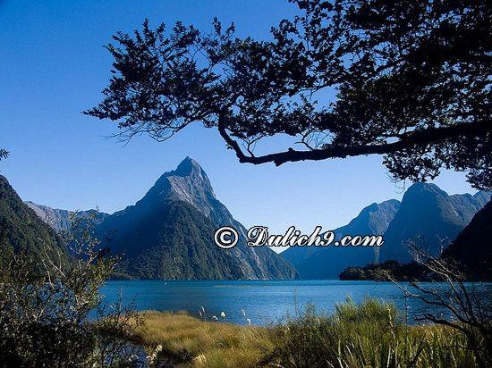 iểm du lịch, tham quan, khi du lịch New Zealand