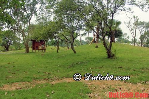 Gần Hà Nội có địa điểm cắm trại nào đẹp?