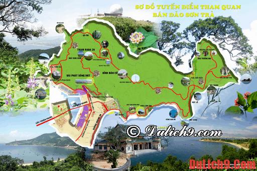 Kinh nghiệm du lịch bán đảo Sơn Trà