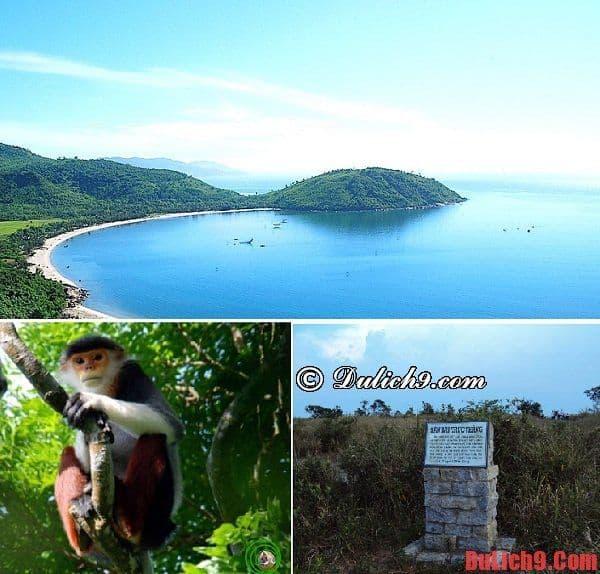 Địa điểm du lịch hấp dẫn ở bán đảo Sơn Trà