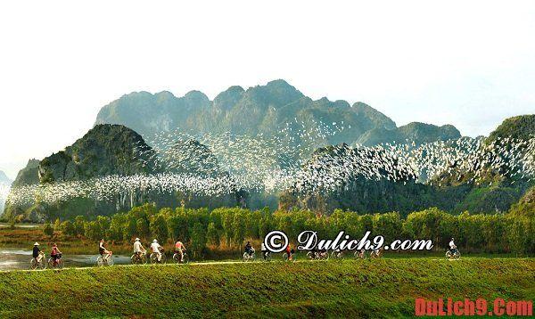 Những kinh nghiệm bổ ích khi phượt Ninh Bình: Hướng dẫn lịch trình du lịch Ninh Bình