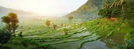 Nên đi du lịch đảo Bali, Indonesia vào thời gian nào?