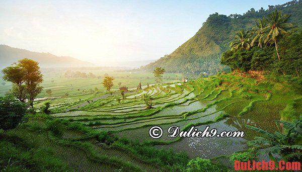 Nên du lịch Bali giá rẻ, trải nghiệm vào thời gian nào?