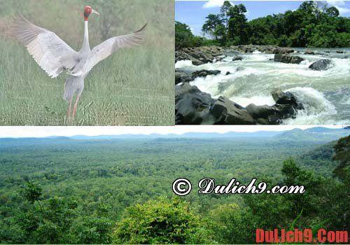 Địa điểm du lịch sinh thái vườn quốc gia Yok Đôn. Địa điểm du lịch nổi tiếng ở Đăk Lăk