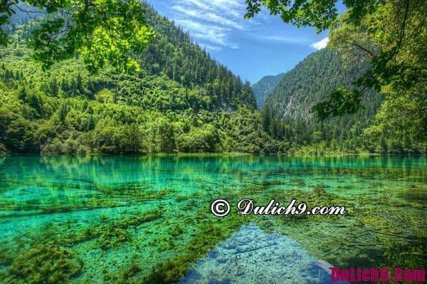 Mùa nào du lịch Cửu Trại Câu đẹp nhất, tiết kiệm chi phí đi lại, ăn ở, mua sắm và tham quan nhất?
