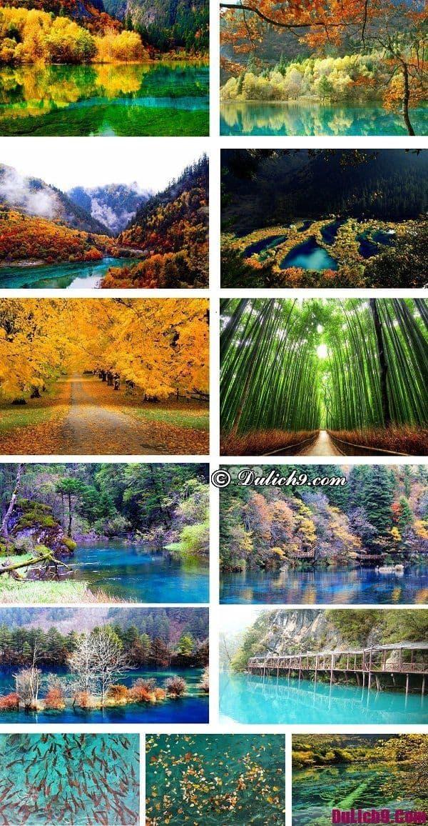 Thời điểm nào du lịch Cử Trại Câu giá rẻ, tự túc, vui vẻ và thuận lợi ngắm cảnh nhất?
