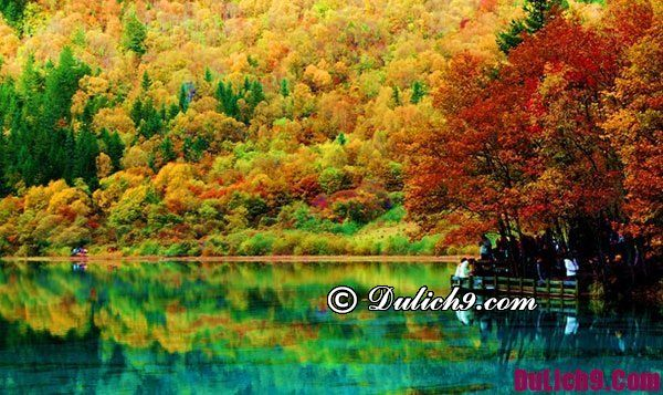 Du lịch Cửu Trại Câu nên đi mùa nào đẹp, thuận lợi và tuyệt vời nhất?
