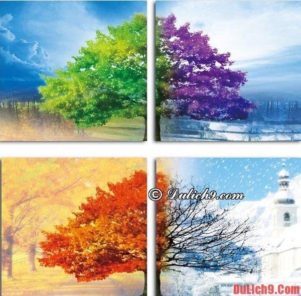Du lịch Hàn Quốc mùa nào, tháng mấy đẹp nhất?