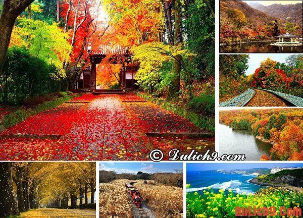 Du lịch bụi, phượt Hàn Quốc mùa thu - Thời điểm du lịch tuyệt vời nhất ở Hàn Quốc. Du lịch Hàn Quốc mùa nào, tháng mấy đẹp nhất?