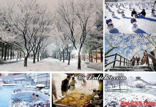 Mùa đông - Thời điểm du lịch Hàn Quốc thú vị và trải nghiệm vui vẻ nhất. nên đi du lịch Hàn Quốc mùa nào, tháng mấy?