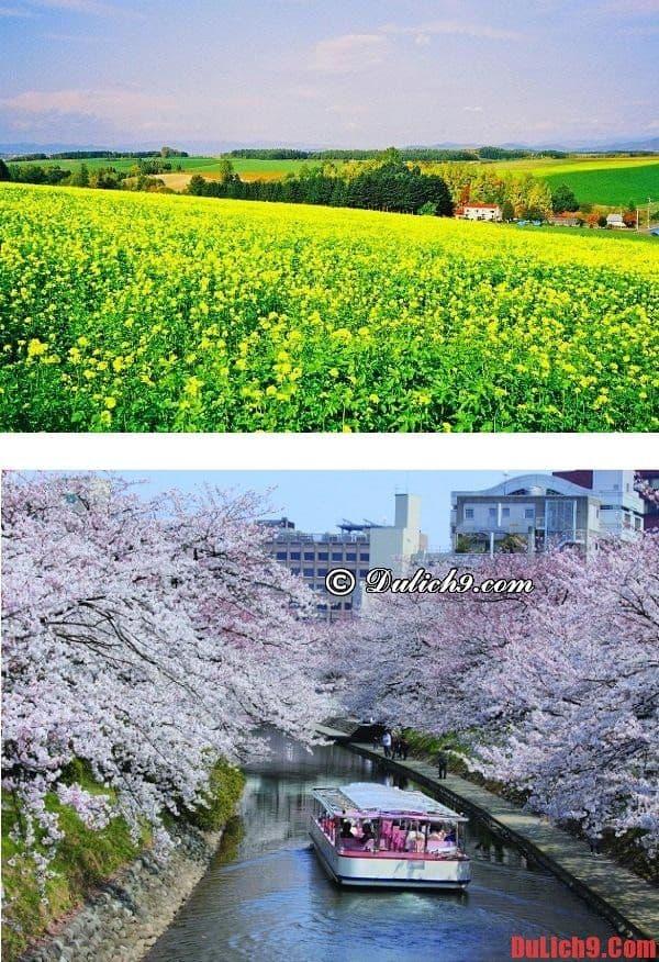 Du lịch Hàn Quốc giá rẻ và tự túc vào thời điểm nào thích hợp nhất? Du lịch Hàn Quốc mùa nào, thời gian nào đẹp nhất trong năm