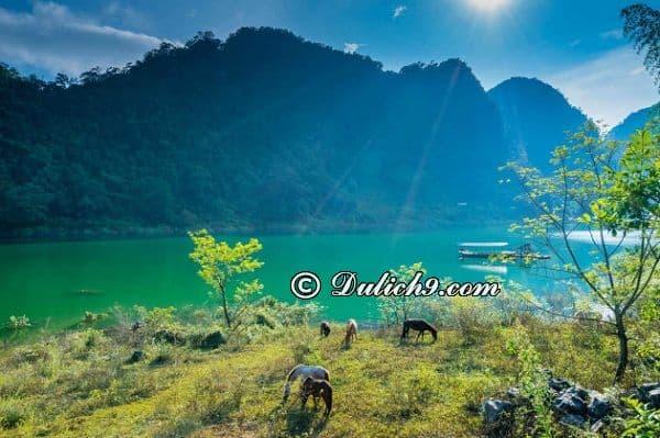 Nên đi du lịch sinh thái hồ Ba Bể vào thời gian nào? Thời điểm lí tưởng đi du lịch hồ Ba Bể