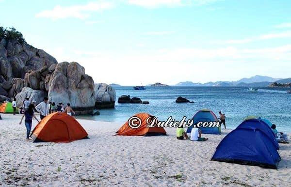 Thuê khách sạn ở Ninh Chữ/ Nên ở đâu khi du lịch Ninh Chữ