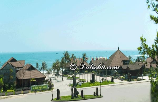 Những nhà nghỉ, khách sạn chất lượng, giá rẻ tại biển Sa Huỳnh - Kinh nghiệm du lịch biển Sa Huỳnh