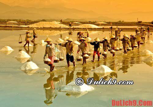 Kinh nghiệm du lịch bụi Sa Huỳnh, giá rẻ, thuận tiện
