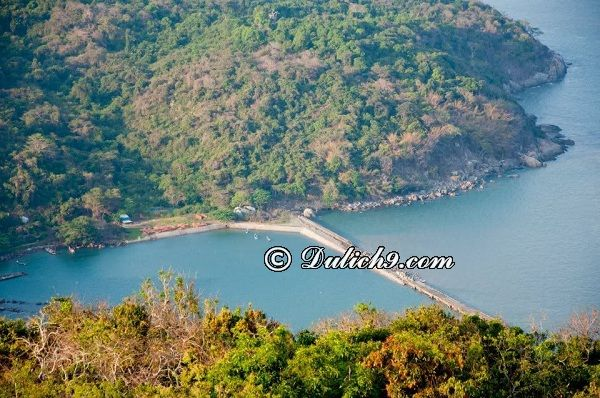 Địa điểm du lịch hấp dẫn ở Cà Mau/ Nên đi đâu chơi ở Cà Mau? Kinh nghiệm du lịch Cà Mau