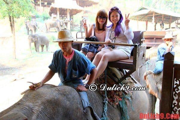 Phương tiện đi lại ở Chiang Mai khi du lịch