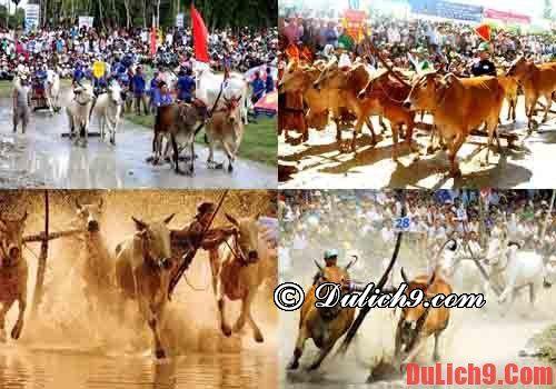 Lễ hội văn hóa đặc trưng miền Tây