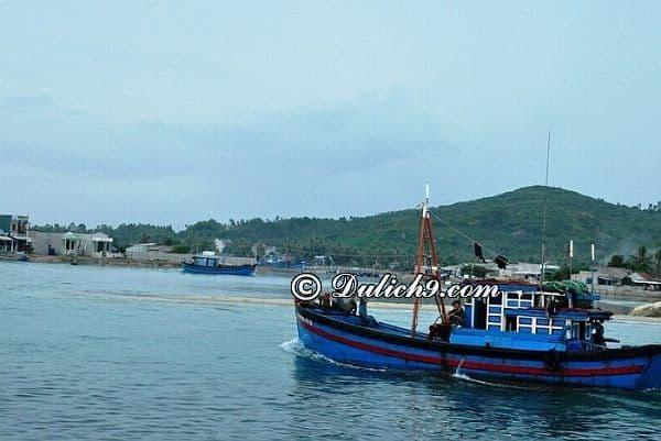 Hướng dẫn đường đi du lịch bụi biển Sa Huỳnh